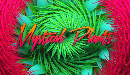 mystical plants – visual ident
