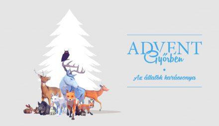 advent győrben – az állatok karácsonya